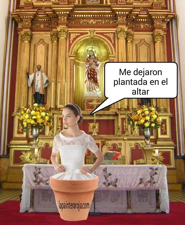 plantada en el altar